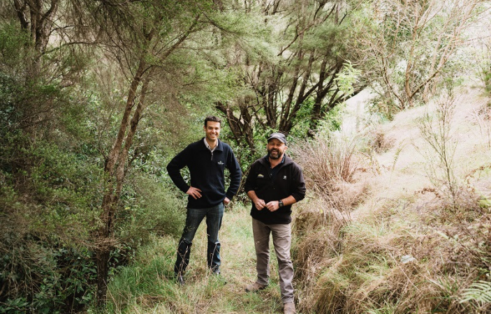 423 hectares of native bush in Hawke's Bay to be fenced and protected