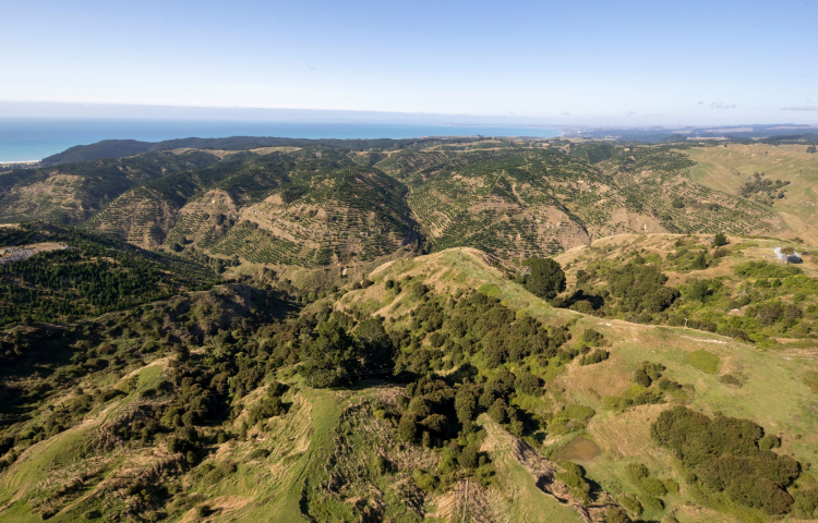 Aerial survey to provide 3D snapshot of Hawke's Bay's Unison network