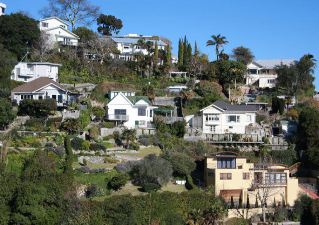 Bay continues to lead on property price growth