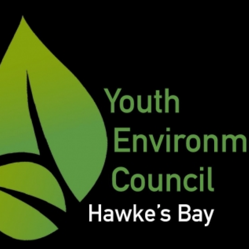 Bay Youth Environment Council jumps into action