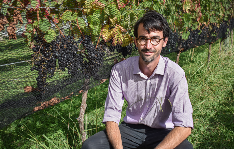 EIT to offer Postgraduate suite in Wine Business and Innovation