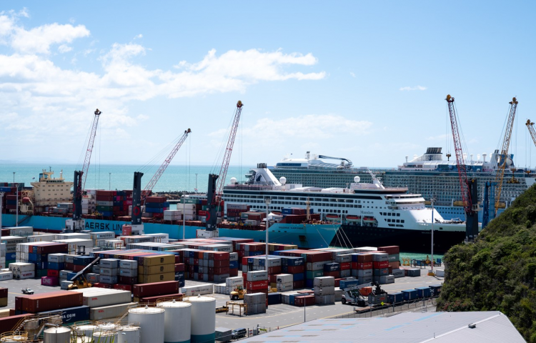 Failure of pallet tank unit revealed as cause of Napier Port chemical spill
