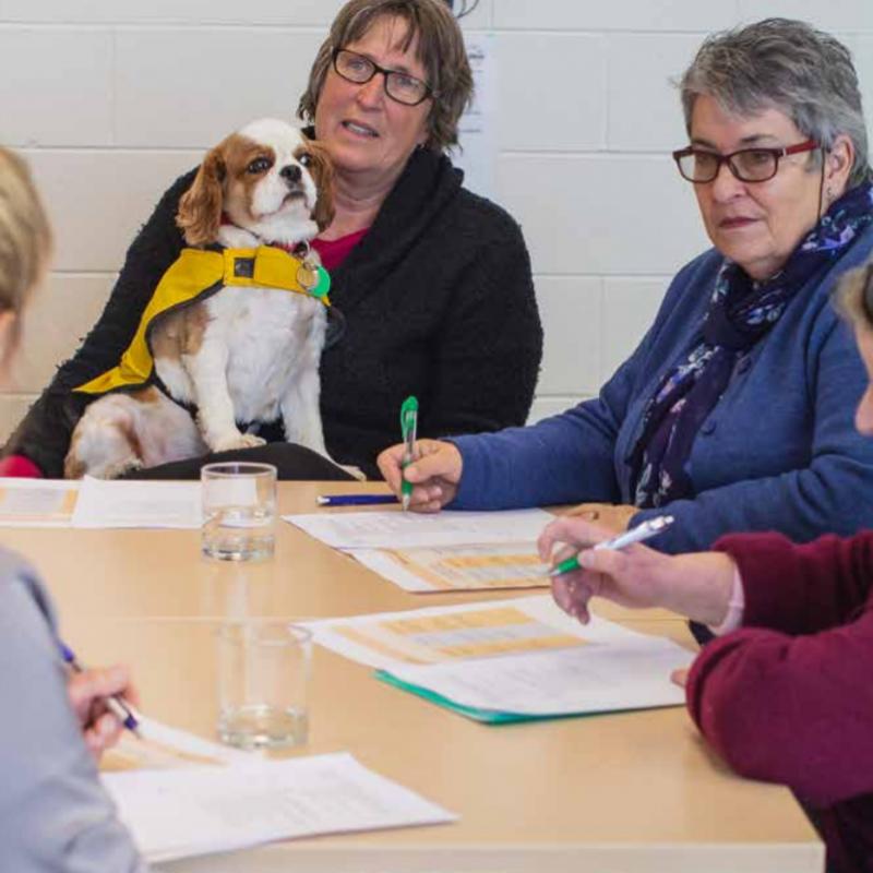 Feedback on Napier Disability Strategy closes next Friday