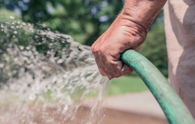 Garden watering in Hastings restricted to every second day from tomorrow