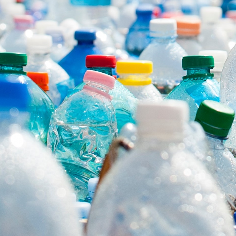 Hastings council tightens plastic recycling policy
