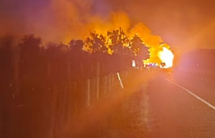 Hawke's Bay firefighters save properties in path of large vegetation fire