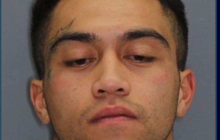 Hawke's Bay police seek 24-year-old man who has multiple warrants to arrest
