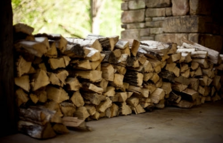Hawke's Bay Regional Council cautions against buying wet or green wood