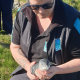 Injured Kororā recovers and returns to the wild