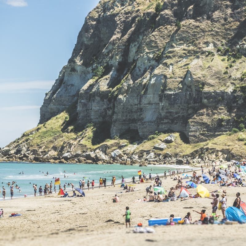 January sets record for tourism in Hawke's Bay