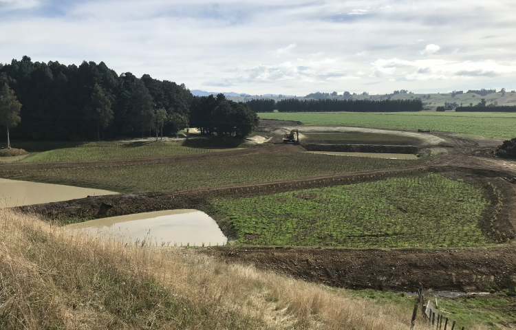 Large wetland being constructed in Tukipo, Central Hawke's Bay
