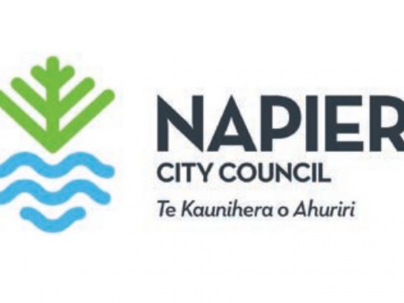 Napier City Council recovery support programme on the horizon