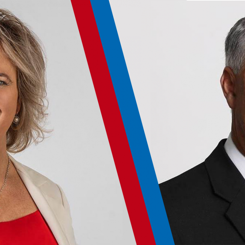 Opinion: A choice between two contrasting styles for Tukituki seat