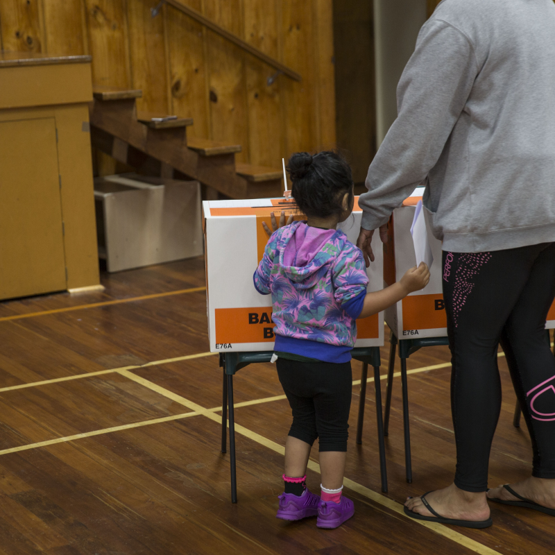 Opinion: Ikaroa-Rāwhiti poised to be well represented in Parliament