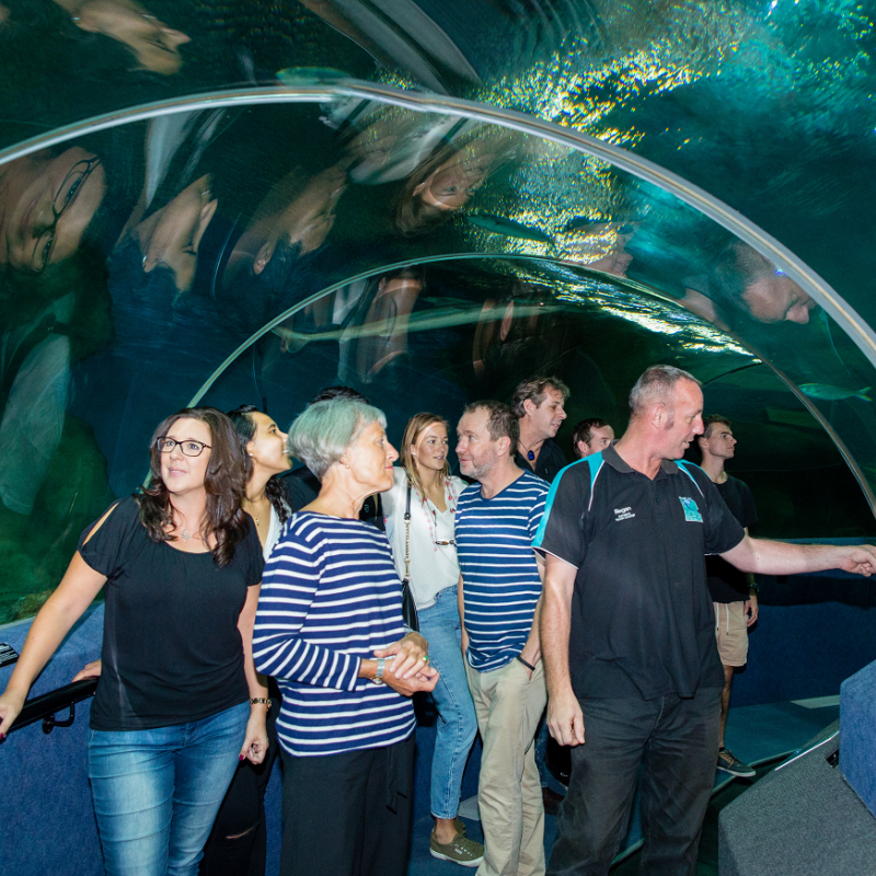 Poetry prowess celebrated at National Aquarium