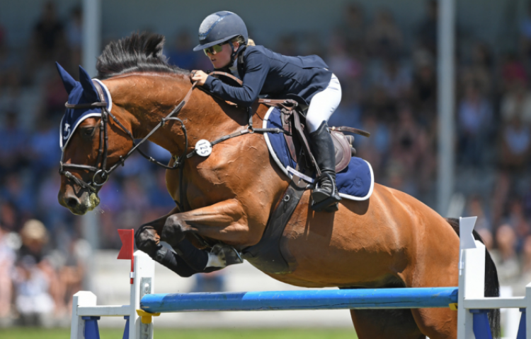 Record numbers head to Young Horse Champs