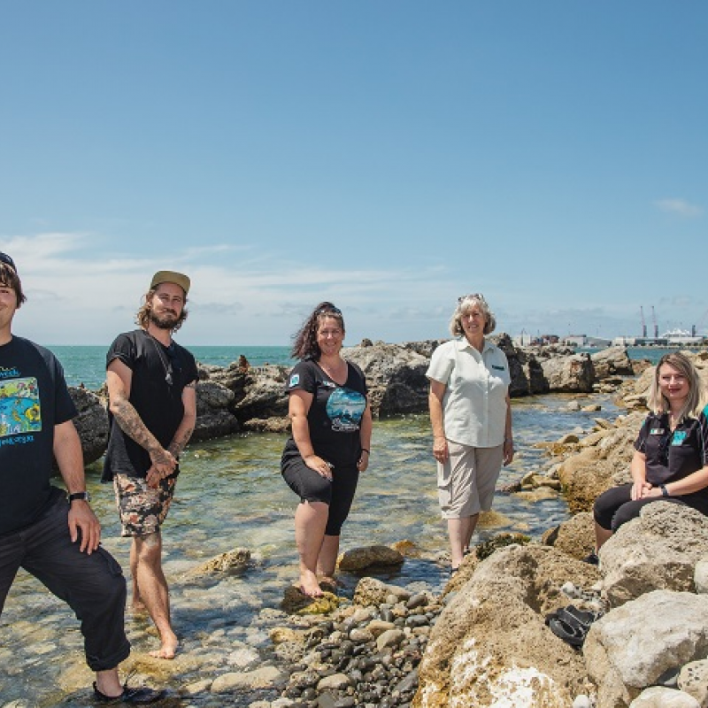 Seaweek: giving something back to nature