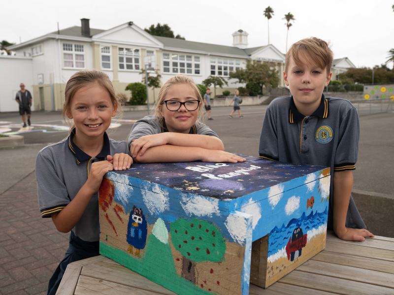 Students build nesting boxes for first on-port penguin sanctuary