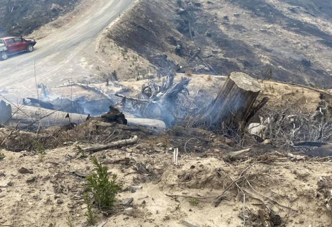Tangoio fire under control but smoke expected to remain for days