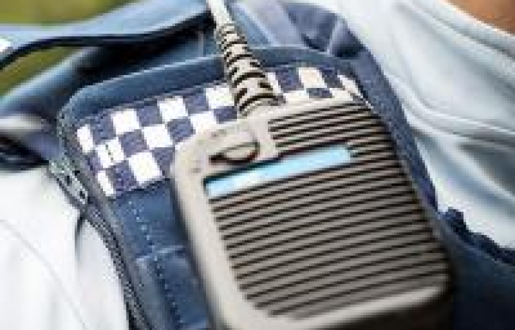 Three charged following burglaries of building materials in Napier