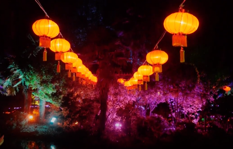 VIDEO: Hastings lantern festival celebrates Guilin Sister City relationship