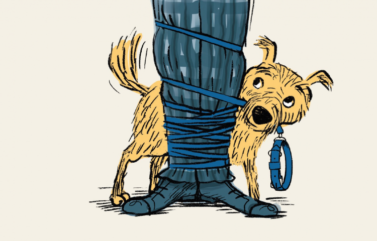 Watch: Wardini Books review of  'How to Walk a Dog'