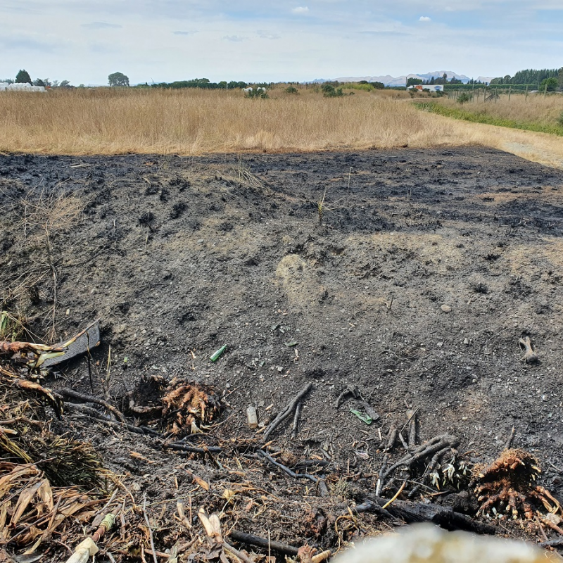 Young people seen near paddock Fire in Flaxmere